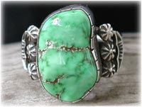Lime Green Carico Lake Turquoise Jewelry