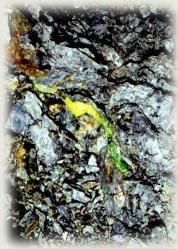 Orvil Jack Turquoise Vein