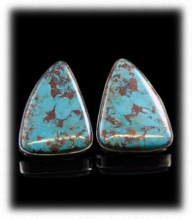 Bisbee Turquoise Stud Earrings