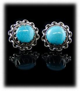 Turquoise Earrings Give Away