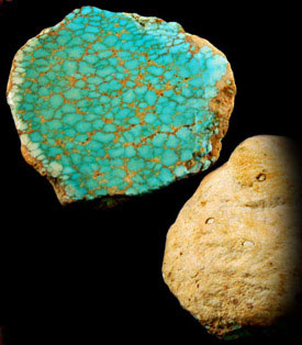 Natural Number 8 Spiderweb Turquoise  Clam