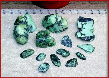 Grouping of Tortoise turquoise - slices, windowed nuggets, and a couple cabs